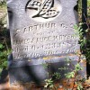 Arthur Dyson, died 1884, age 1 year 3 months, 11 days
