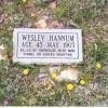 Wesley Hannum